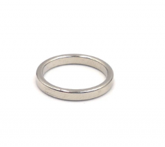 Rare Earth Powerful Ring Neodymium Magnets